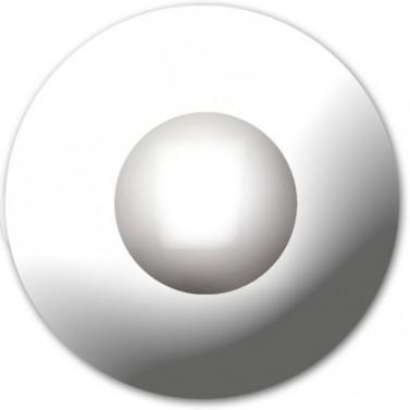 Lentilles - Blanc