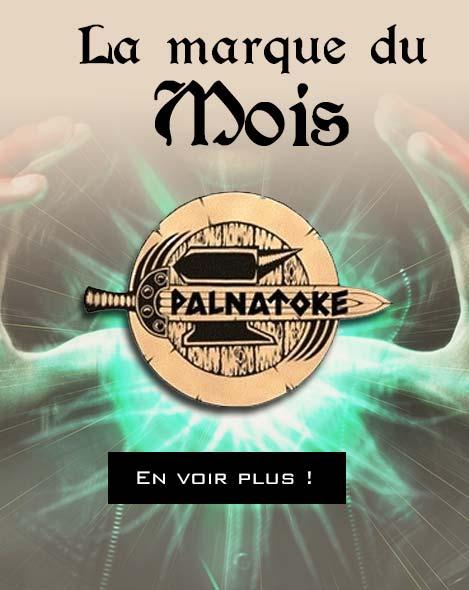 Découvrez les armes de GN Palnatoke